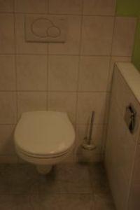 Vrijhangend toilet compleet
